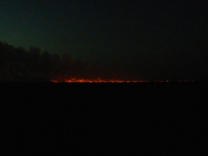 Prairie fires are oh so common here in the summer. This one was about 2 miles from my community and quite striking in the dark of night.