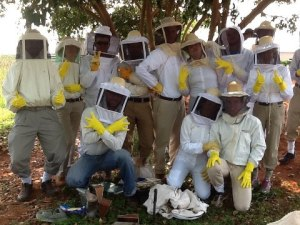 A training session with the bees and fellow volunteers. Guess which one is me!