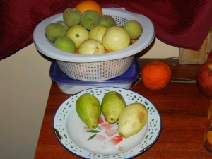 Fruits of late October: peaches and guavas (called guayabas here)