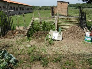 Abonera or compost bins. L-R: new pile started, old pile of straight cow manure now ready for the garden, 2 month old pile almost ready for the garden. The white bucket on right is compost tea!