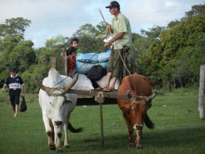 Celso driving the guei (ox and cart) laden with belongings from the latest visit of extended family - Easter week. This is the way they move quantities of materials here!