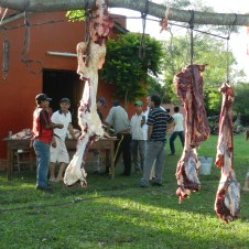 Fiesta Patronal 2014; A 2-day affair, Day 1 of our fiesta begins with killing a cow and preparing the meat for tomorrow's BBQ. Large parts are hung until ready for cutting into smaller chunks. Day 2 is the actual BBQ and giant all-day party.