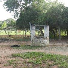 Farm well