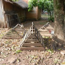 Small chicken coops used to contain runaway hens while allowing them outdoors. The babies can usually slip through the slats and walk around freely